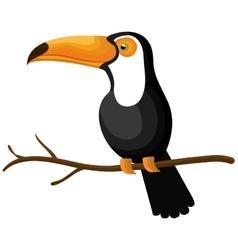 Toucan bird isolated icon vector