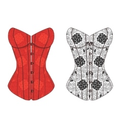 Corset Lace Set vector image