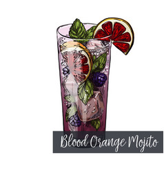 Blood orange and blackberry mojito cocktail vector