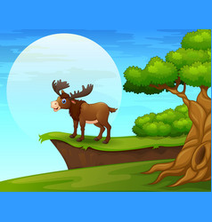 Cartoon moose near the cliff vector
