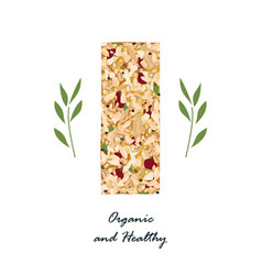 granola bar with flax sezame and sunflower seeds vector image