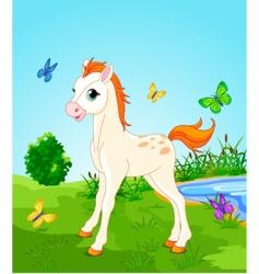 meadow horse vector image vector image