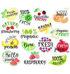 Set fruit labels and stickers vector