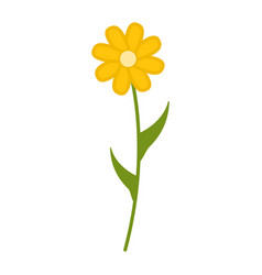 Wildflowers flower flat icon plant isolated on vector