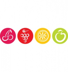 fruits icon vector image vector image