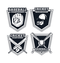 baseball and cricket player vector image