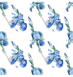 beautiful seamless pattern iris flowers vector image