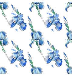 beautiful seamless pattern iris flowers vector image