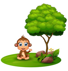 Cartoon monkey sitting under a tree on a white bac vector