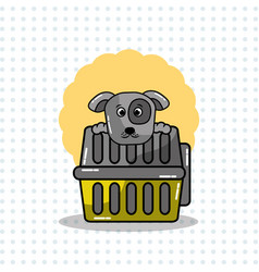 Cute dog and carrying animal pet vector