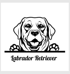 Dog head labrador retriever breed black and vector