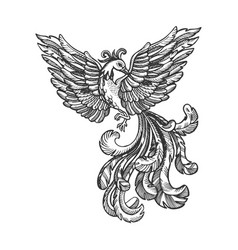 Firebird animal engraving vector