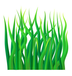 green grass icon realistic style vector image