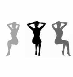 seated womans shadow set vector image