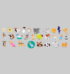 set of dogs adorable and friendly animal on gray vector image