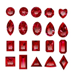 Set of realistic red rubies with different cuts vector image