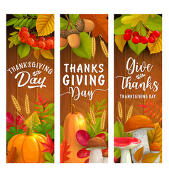 thanksgiving day banners autumn harvest holiday vector image