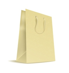 Carrier Paper Bag vector image