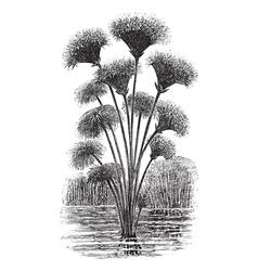 Vintage Papyrus Sketch vector image vector image