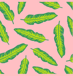 colourful tropical background design vector image
