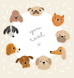 cute background with funny dogs vector image