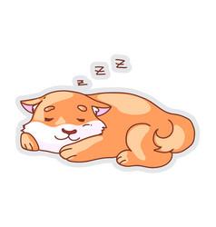 cute sleeping dog isolated on white background vector image