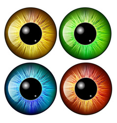 eye pupil iris symbol icon design beautiful vector image