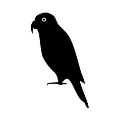 lory parrot silhouette icon in flat style vector image
