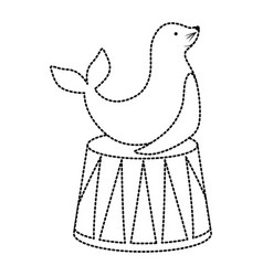 seal animal design vector image