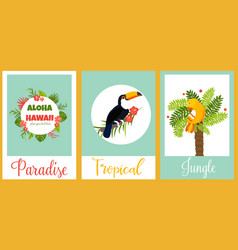 set of tropical cards with birds and elements vector image vector image