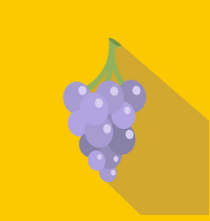 Grape icon flat style vector