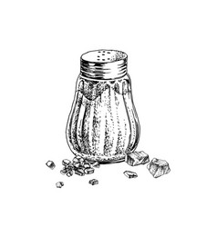 hand drawn salt shaker and crystals vector image