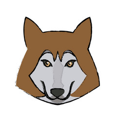 Portrait of wolf husky animal wildlife image vector