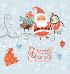 Santa Claus and owls vector image