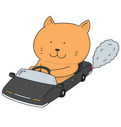 set of cat driving car vector image
