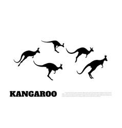 Black silhouettes of jumping kangaroos vector