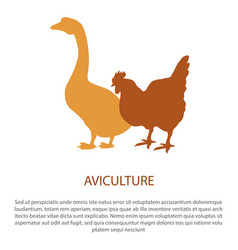 agriculture poster with silhouette of hen goose vector image vector image