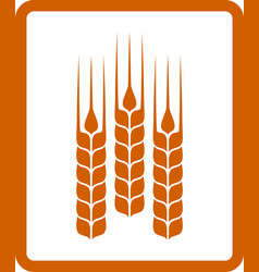 icon with wheat ears vector image vector image
