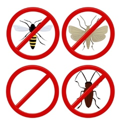 no insects cockroach moth and wasp vector image vector image