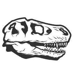 t-rex dinosaur skull isolated on white background vector image