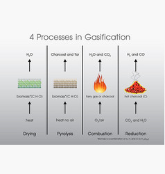 4 processes in gasification vector