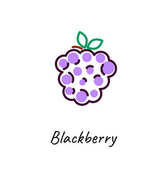 blackberry icon outline vector image