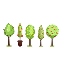 different trees set vector image