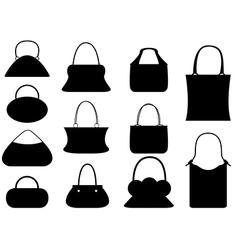 Female purse set vector