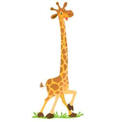 Funny smiling giraffe vector