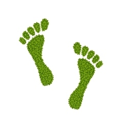 Human Footsteps Made in Green Leaves vector