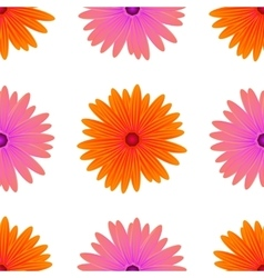 Spring Pink Orange Flowers Isolated vector