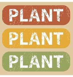 Vintage PLANT stamp set vector
