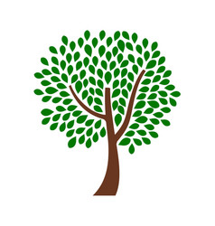 ornamental tree design with green leaves vector image vector image