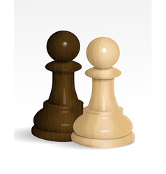 Two chess pawns vector image